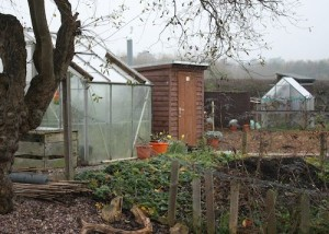 NatSol Composting Toilet with Timber Building