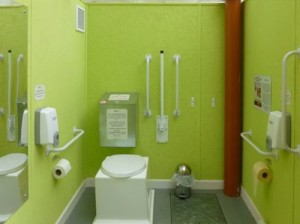 Composting toilet layout with full access