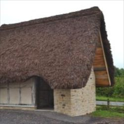 Thatched dry toilet privy